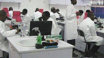 lassa outbreak nigeria 2020