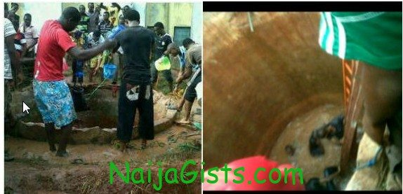 7 students fall into well at ambrose alli university