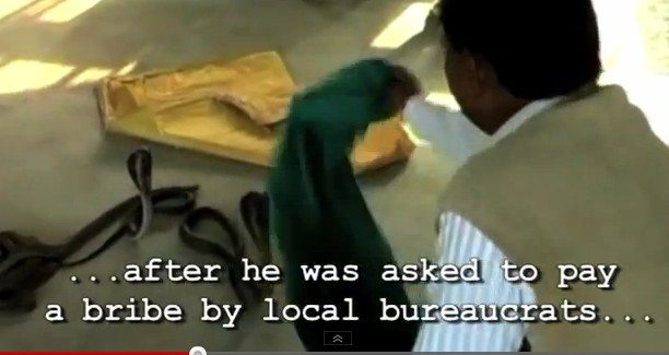 man releases live snakes in tax office