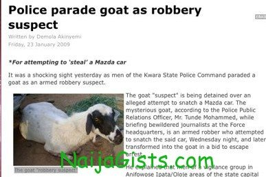police parade goat as robbery suspect 1