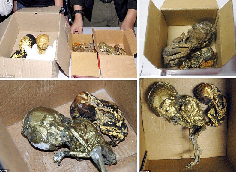 roasted human babies hok kuen chow