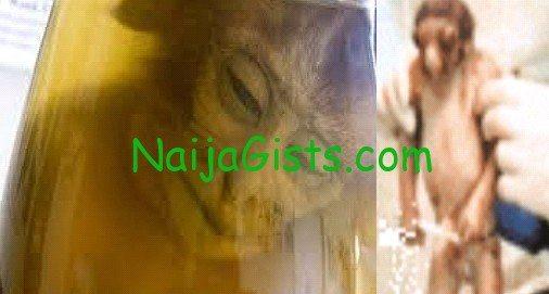 monkey baby nigeria