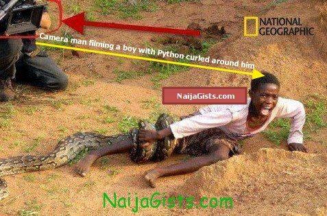 python wrapped around boy