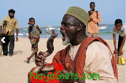 nigeria got talent snake man