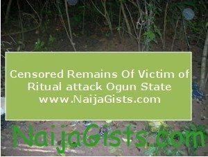 ritualists in ogun state nigeria