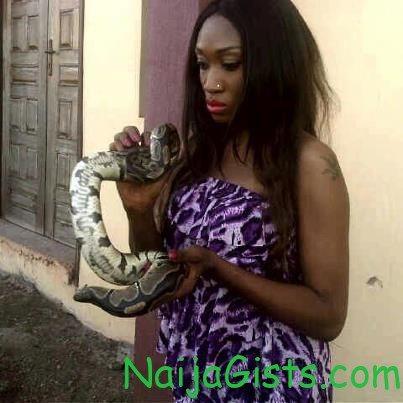 oge okoye snake