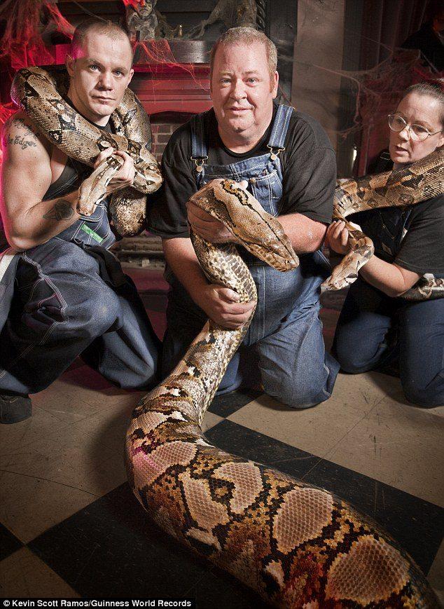 Worlds Longest Snake, Medusa Enters Guinness World