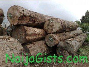 nigeria european union timber