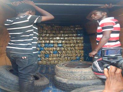 nigerian weed dealers arrested