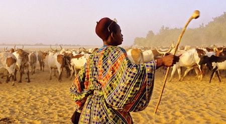 fulani vacate ebonyi