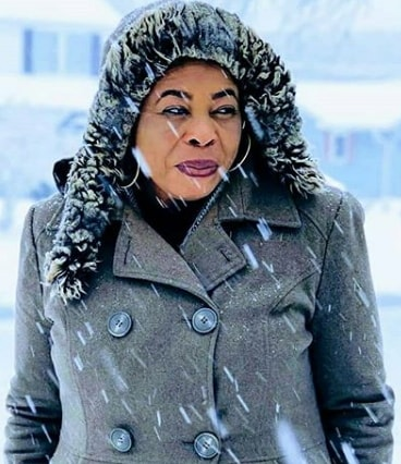 toyin adewale winter snow storm