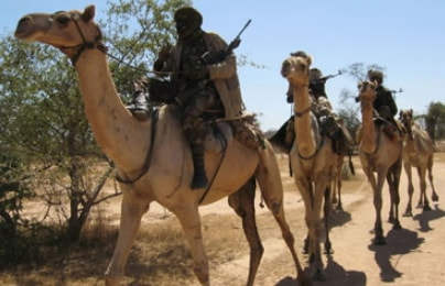 fulani militants kill farmers agasha town benue state