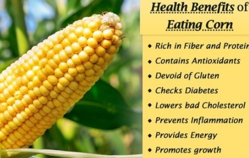 health benefits of eating corn