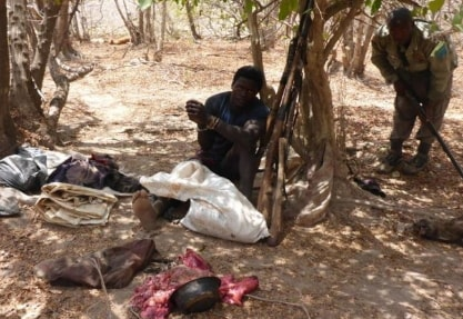 hunter killed baboon bauchi