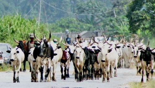 menace killer fulani herdsmen