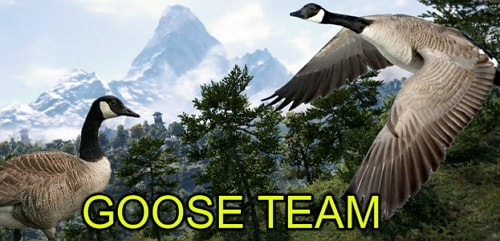 lessons learnt goose