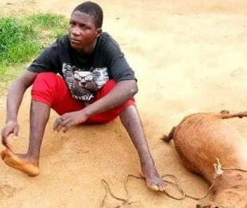 boy raped goat death lagos