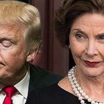 laura bush donald trump cruel immoral