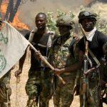 nigerian army hire former boko haram members