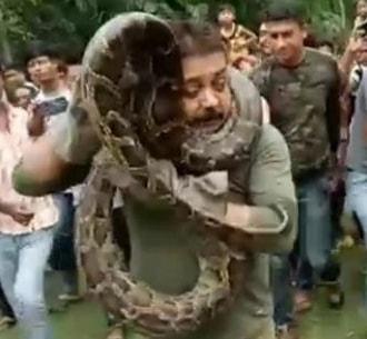 snake strangles man india selfie