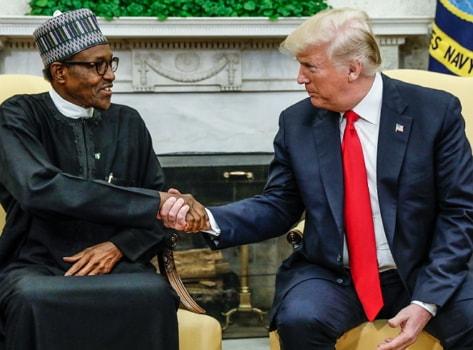donald trump lifeless buhari
