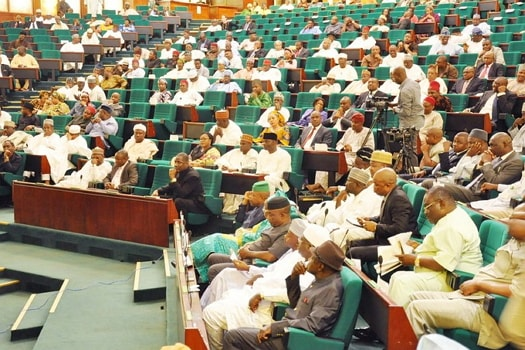 nass members abused nigerian constitution