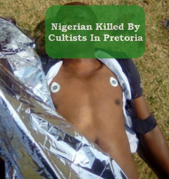 nigerian killed cultists south africa