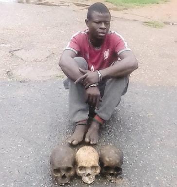 ritualist 3 human skulls ibadan