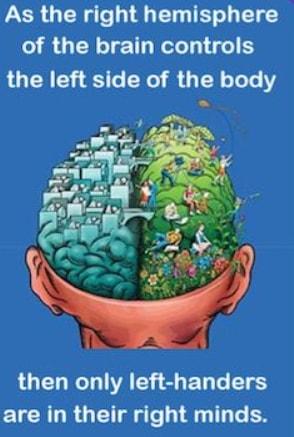 scientific facts left handed people