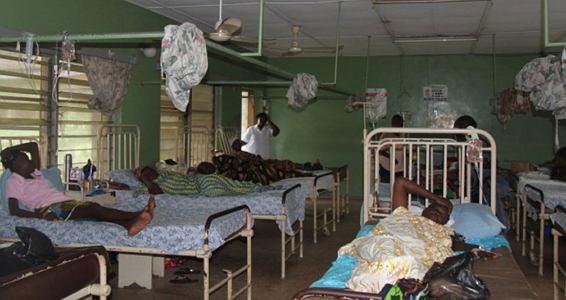 borno cholera outbreak infection rate