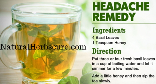 herbal teas headache migraine