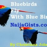nigerian short stories fiction blog