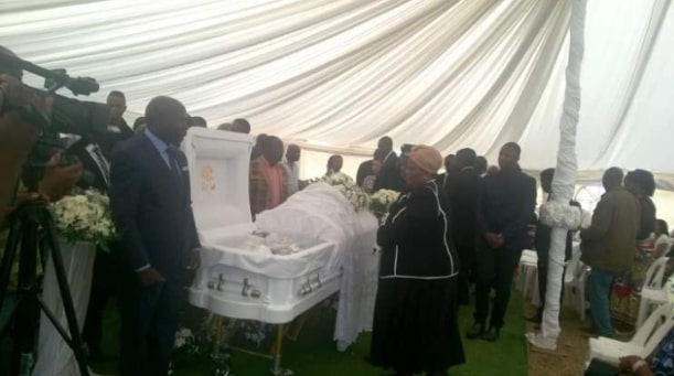 cobra snake grace mugabe mother burial