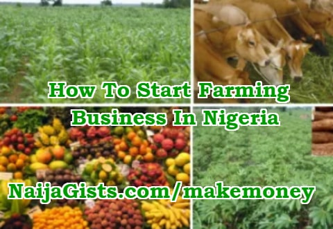 how to start farming business in nigeria 2019