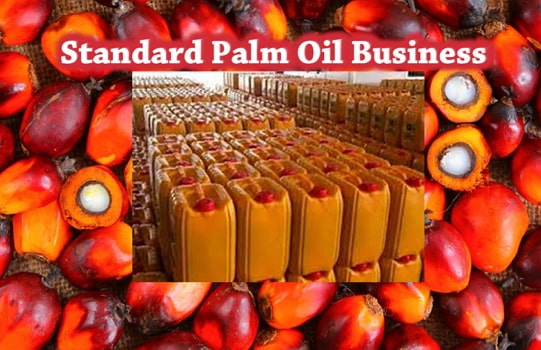 how to start palm oil processing mill business nigeria