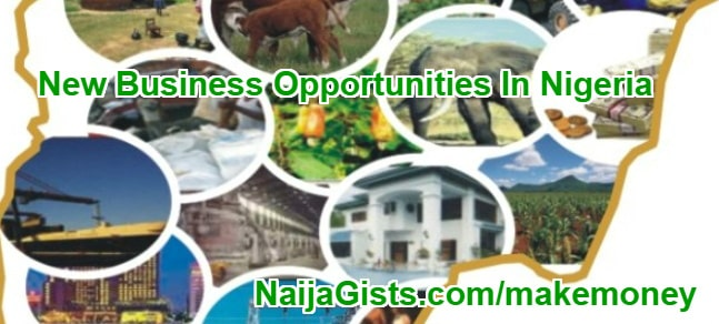 new business opportunities nigeria 2018 2019