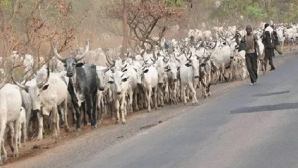 fulani herdsmen killing crisis lagos nigeria