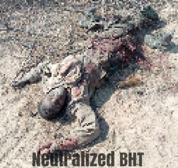 nigerian troops kill boko haram