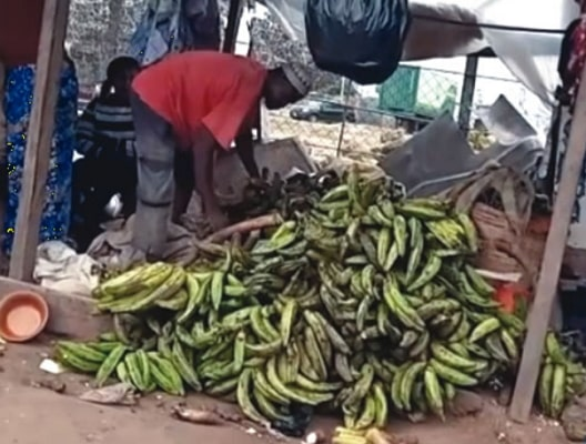 lagos market calcium carbide ripen banana plantain