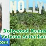 nollywood means nothing