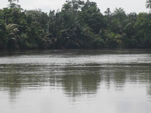 corpse found osun river