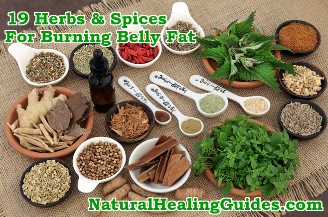 herbs spices burning belly fat
