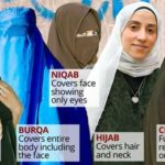 Hijab Islamic Veil: Feminine Modesty Or Imprisonment ?