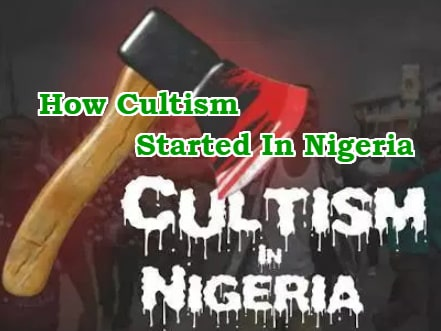 how cultism started in nigeria