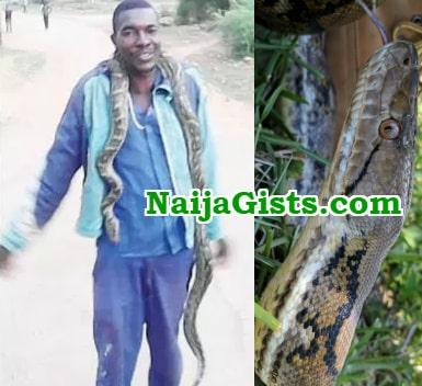 python snake good luck