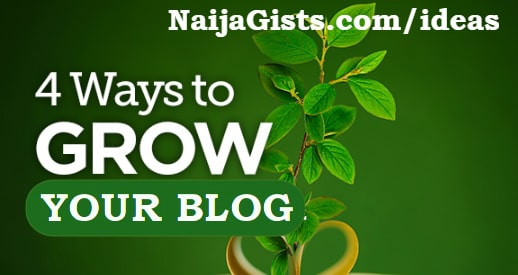 how to grow your blog from scratch 2019