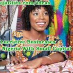 Top 20 Lucrative Home Business Ideas For Ladies, Housewives In Nigeria