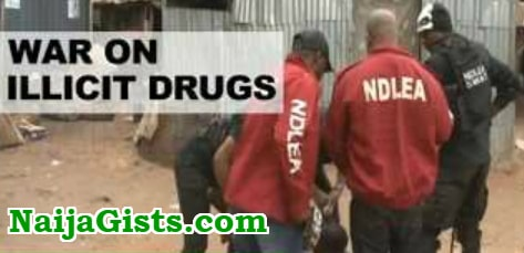 2 nigerians arrested swallowing cocaine kano