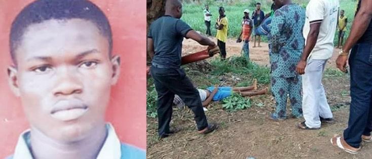 boy falls death mango tree akure