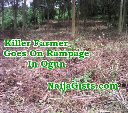 killer farmer rampage yewa
